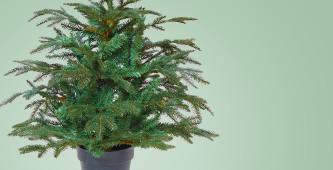 Kleine kunstkerstboom