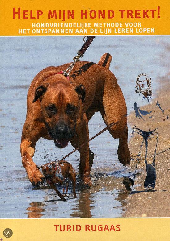 springen afleren hond