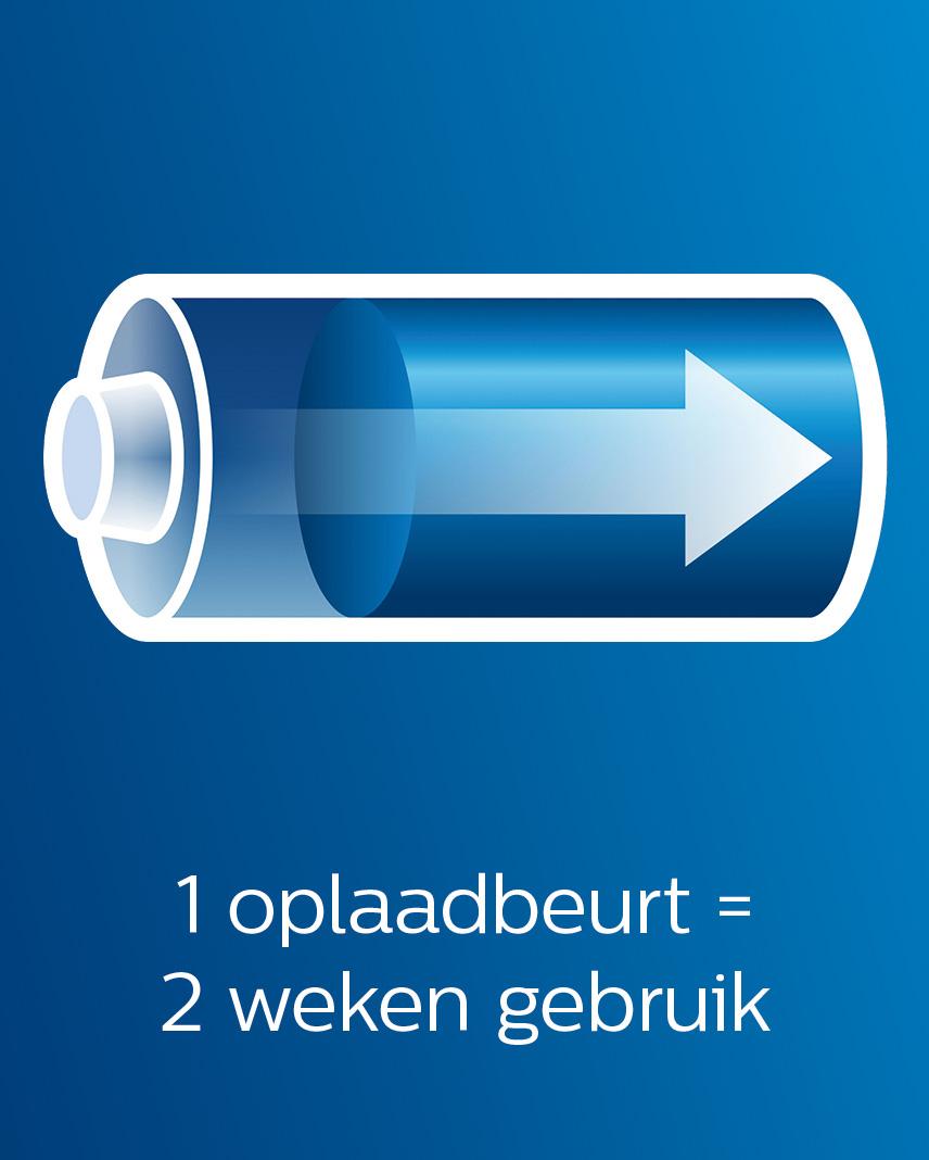 Philips Avent stomer blender