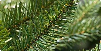 Beste kunstkerstboom met mooie naalden en takken