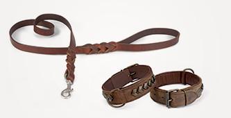 De mooiste hondenriemen en -halsbanden