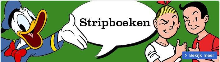 130916 Strippagina IDBW