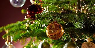 Zwart Wit Kerstdecoraties : Bol.com kerstversiering kopen? kerstdecoratie koop je bij bol.com!